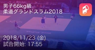 柔道 試合サマリー