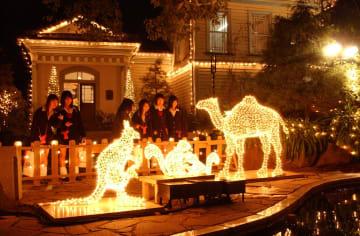 幻想的な光を放つ動物のオブジェ=長崎市、グラバー園