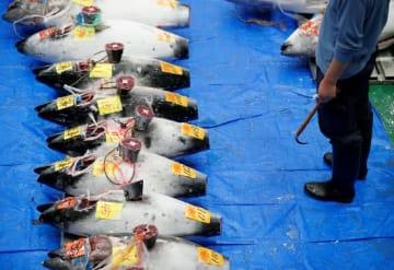 豊洲市場の様子(写真:ロイター/アフロ)