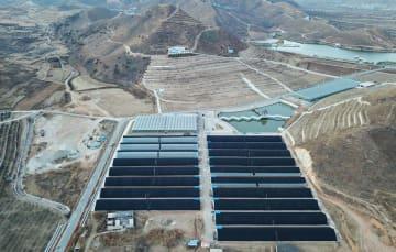 「南の果物を北で栽培」新たな農業モデルを模索 河北省灤州市