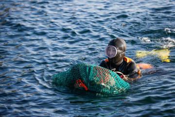 素潜り漁をする海女 韓国済州島