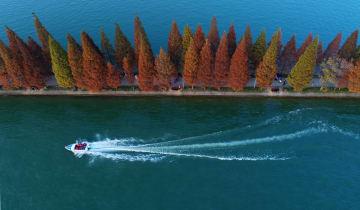 湖に映える木々 湖南烈士公園 湖南省長沙市