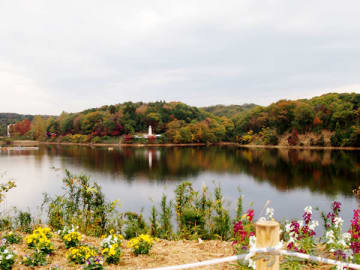 屋外レストラン・ウーテピルスから望める宮沢湖