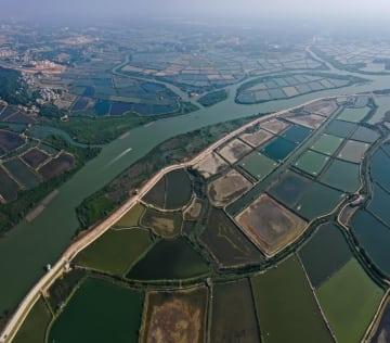 エビ養殖場が生む美しい風景画のような世界 広西欽州