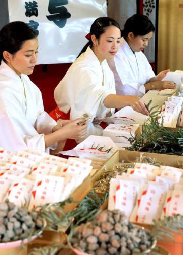 酸っぱい香りが漂う紅梅殿で梅の実を袋に詰めていく巫女たち(27日午後1時、京都市上京区・北野天満宮)