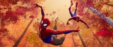アニメーションでも「スパイダーマン」の世界観が拡大へ!(写真は映画『スパイダーマン:スパイダーバース』より)