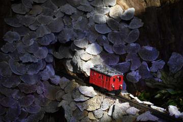 ワシントンの米国植物庭園で鉄道模型展