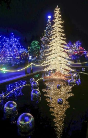 バンクーバーの植物園でクリスマスイルミネーション開始