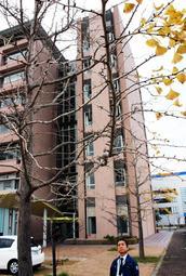 大半の葉が落ち、黄葉などが観測できなくなったイチョウの標本木=神戸市中央区脇浜海岸通1