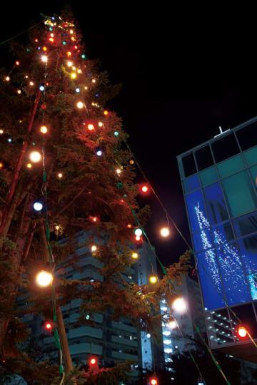 横須賀学院 校門でクリスマス演出(横須賀市)