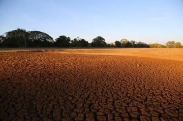 日本の温室効果ガス対策は国際社会から注目されている (Bioversity International:Dry river bed in SriLanka)