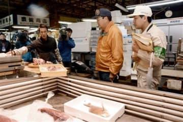 鮮魚の保存状態などを調べた熊本市と県の一斉取り締まり=熊本市西区