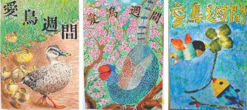 《愛鳥週間部門》左から大橋一華さんの作品、猪内孔盟君の作品、島崎輝星叶君の作品
