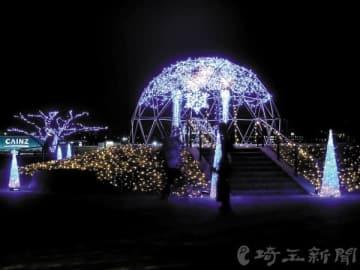 冬の夜空を彩るイルミネーション=本庄市のマリーゴールドの丘公園