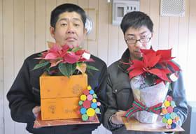 8日から売り出すクリスマスに人気のポインセチア