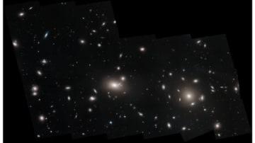 かみのけ座銀河団から発見された多数の球状星団 (c) NASA, ESA, J. Mack (STScI), and J. Madrid (Australian Telescope National Facility)