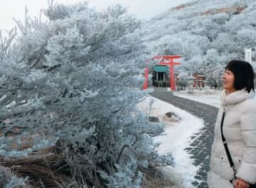 今季初の霧氷を楽しむ観光客=8日午前、別府市の鶴見岳山上