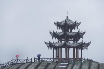 雪で白く染まった茶畑 湖北省宣恩県