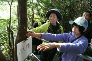 社叢の樹木にネームプレートを取り付ける子どもたち=佐伯市猪串浦
