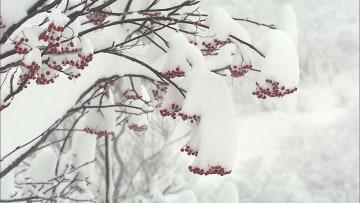 全国各地で真冬の寒さ きのうよりさらに低く...