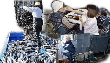 入管難民法などの改正案が成立し、外国人労働者の受け入れ拡大が進む見通しとなった。人手不足の企業からは好意的に受け止める声が聞かれた一方、一部には慎重な運用を求める意見もある(写真はコラージュ。左から時計回りに水産、介護、造船の現場)