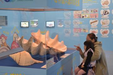 世界最大の二枚貝「オオシャコガイ」を見る入館者=大洗町磯浜町