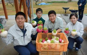 校内で収穫した野菜の販売に挑戦する児湯るぴなす支援学校の生徒