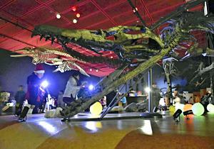 「ワクワク」夜の博物館 ほるるでイベント、化石標本など見学
