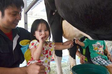 牛のおっぱい ギュッ! わかば保育園で乳搾り体験 沖縄・那覇