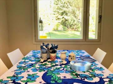 自然と共存する暮らしを体験!森ピクニック&ブルーベリーパイ作り【フィンランド式幸せになるヒントを探して】