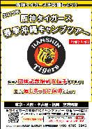 選手と同じホテルに宿泊!阪神の春季沖縄キャンプ見学ツアー発売