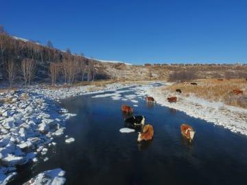 厳冬でも「凍らない川」 内モンゴル自治区アルシャン市