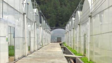 重慶電力、三峡ダム地域の貧困脱却を後押し