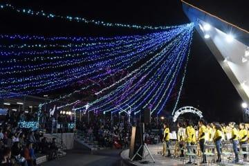 色とりどりの光を放つイルミネーション=三好市池田町サラダのへそっ子公園