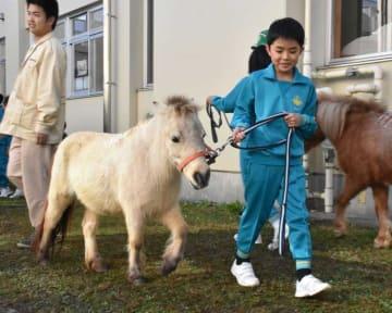 小学校に動物園