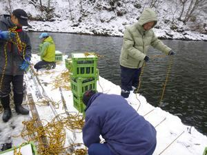桧原湖底で純米吟醸酒熟成 北塩原、19年4月ごろ引き上げ
