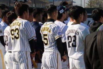 今年の12球団合同トライアウトの様子【写真:福谷佑介】