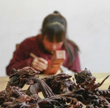 マホガニー材加工で農家の収入増を支援 河北省遵化市