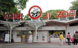 神戸市立王子動物園=神戸市灘区王子町3