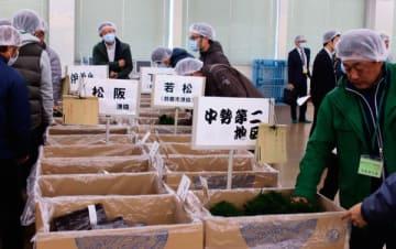 【黒ノリやスジアオノリを手に取る入札参加者ら=松阪市中央町の三重漁連のり流通センターで】