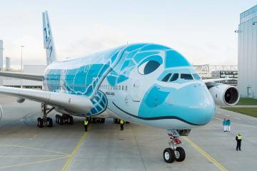 ウミガメが描かれた全日空のエアバスA380=13日、ドイツ・ハンブルク(全日空提供)