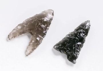 北海道木古内町の遺跡から出土した、長野県の黒曜石で作られた矢尻(北海道埋蔵文化財センター提供)