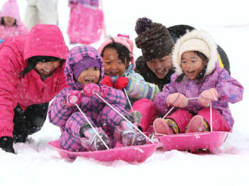 白銀のゲレンデでそり遊びを楽しむ保育園児たち(14日午前11時10分、高島市今津町・箱館山スキー場)
