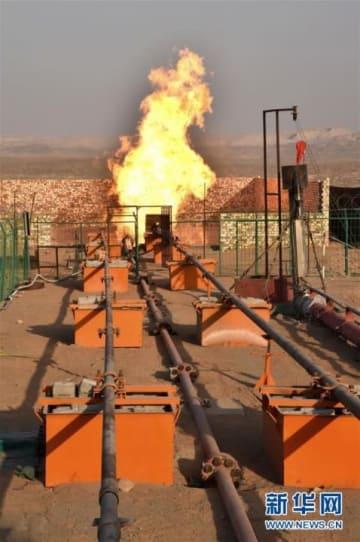 タリム油田で1000億立方メートル級のガス層が発見―中国