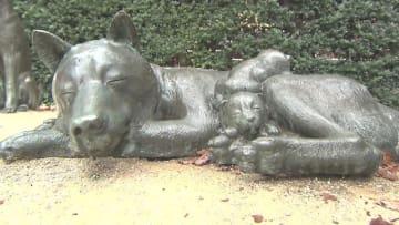 「お犬様」が10万匹住んでいた?!人気の街「中野」の意外な歴史