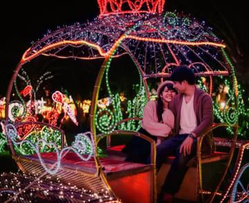 東南植物楽園クリスマスイベントのイメージ写真