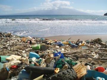 米ハワイの海岸に打ち上げられたさまざまなプラスチックごみ(米海洋大気局提供)