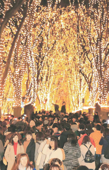光のページェントが開幕し、まばゆい光の回廊に姿を変えたケヤキ並木=14日午後5時35分ごろ、仙台市青葉区の定禅寺通