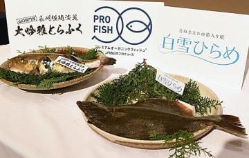 新たに陸上養殖に乗り出した「白雪ひらめ」(手前)と「大吟雅とらふく」=17日、京都市下京区のホテルグランヴィア京都