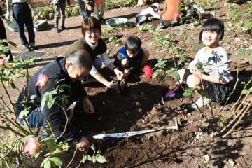 こどものくにの開園80周年を花で彩ろうと植栽する市民ボランティア